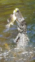 Jennifer Hamilton lands a big one on Blue Cypress Lake